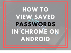 view saved passwords chrome android